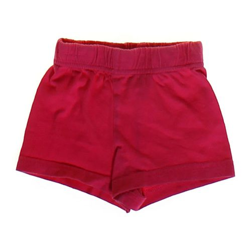 Circo Basic Shorts in size 12 mo at up to 95% Off - Swap.com