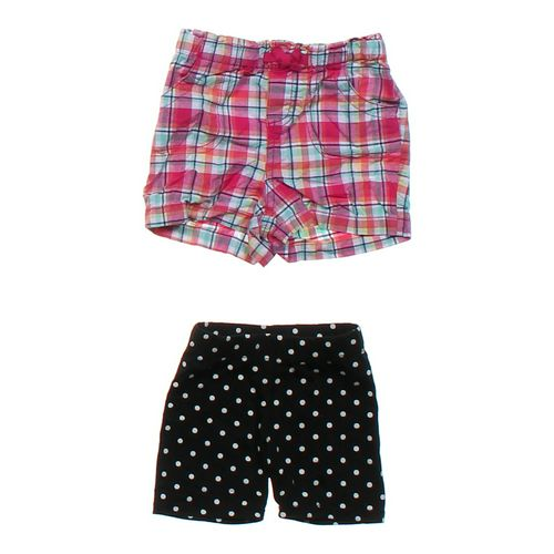 Circo Casual Shorts Set in size 24 mo at up to 95% Off - Swap.com