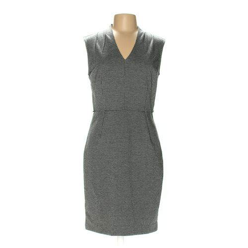 Ann Taylor Dress in size 6 at up to 95% Off - Swap.com