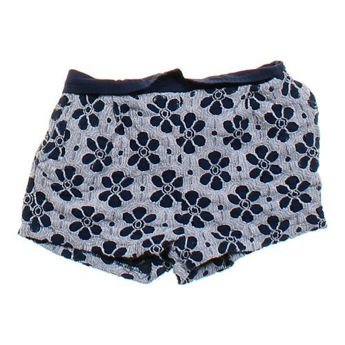 Lapis Girl Embroidered Shorts in size 4/4T at up to 95% Off - Swap.com