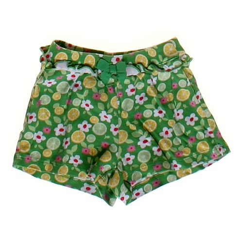 Gymboree Floral & Fruit Print Shorts in size 4/4T at up to 95% Off - Swap.com
