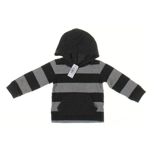 Healthtex Hoodie in size 3/3T at up to 95% Off - Swap.com