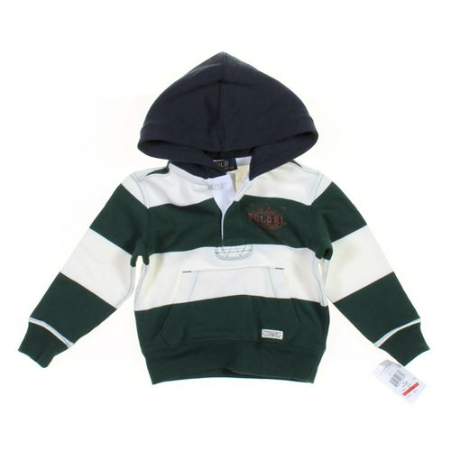Polo by Ralph Lauren Hoodie in size 2/2T at up to 95% Off - Swap.com