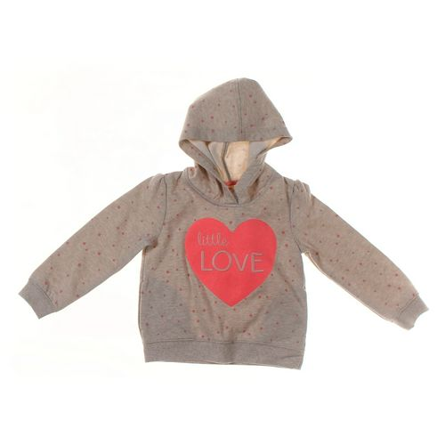 Gymboree Hoodie in size 4/4T at up to 95% Off - Swap.com