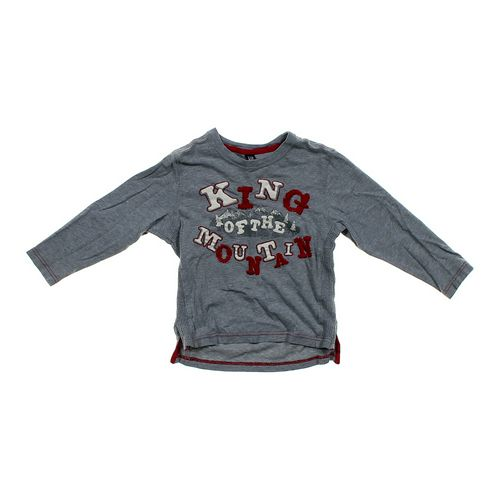 babyGap King of the Mountain Shirt in size 4/4T at up to 95% Off - Swap.com