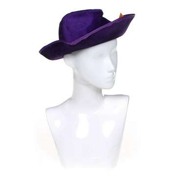 Novelty Hat Costume Accessory for Sale on Swap.com
