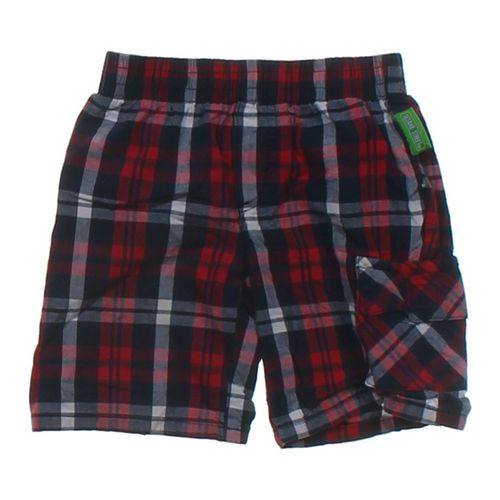 Sesame Street Plaid Shorts in size 24 mo at up to 95% Off - Swap.com