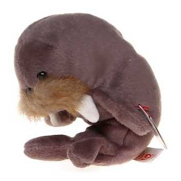 Plush Ty Jolly the Walrus for Sale on Swap.com