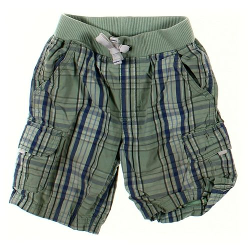Carter's Shorts in size 4/4T at up to 95% Off - Swap.com