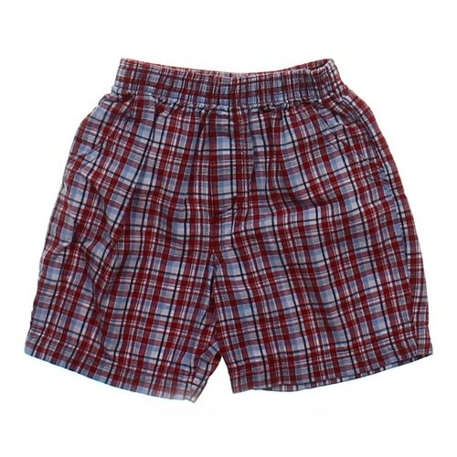 Koala Kids Shorts in size 24 mo at up to 95% Off - Swap.com