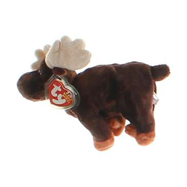 TY Beanie Baby - ZEUS the Moose for Sale on Swap.com
