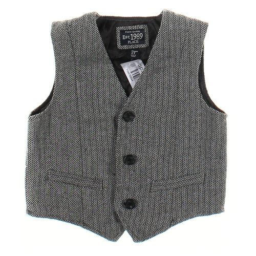 The Children's Place Vest in size 2/2T at up to 95% Off - Swap.com