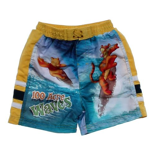 Disney Winnie the Pooh Swim Trunks in size 24 mo at up to 95% Off - Swap.com